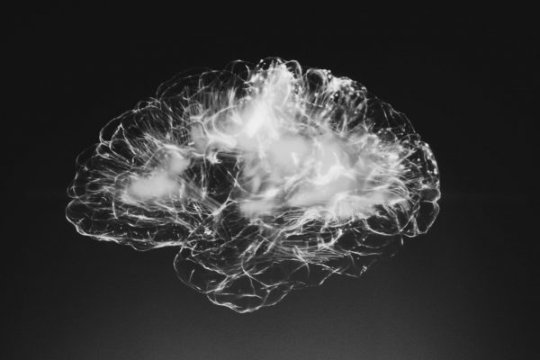 Xray styled image of a human brain.